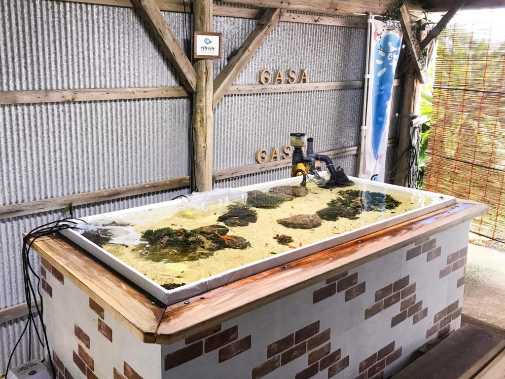 ガサガサアクアハウスの人工タイドプール